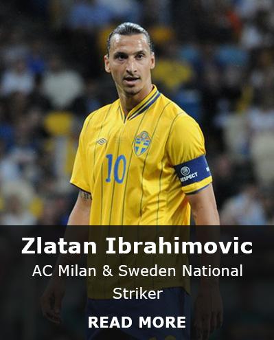 Zlatan Ibrahimovic stats